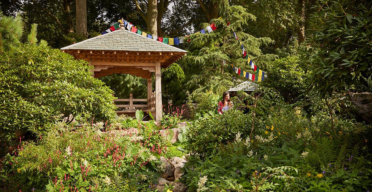 Trialfinders Anniversary Garden